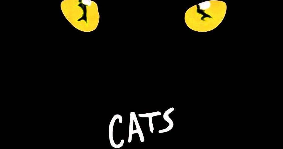 Connaissez-vous Cats Le Musical ?