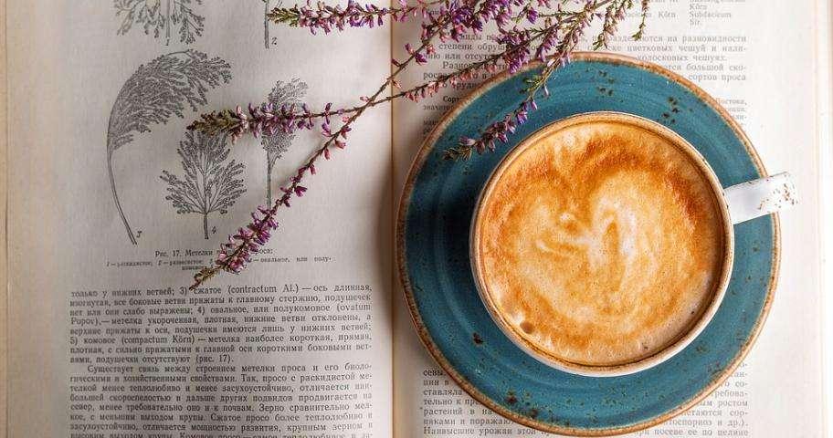 Oubliez la grisaille dans les cafés littéraires !